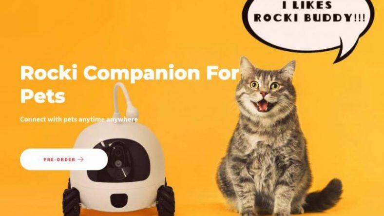 Rockirobot for pet 825x500 1
