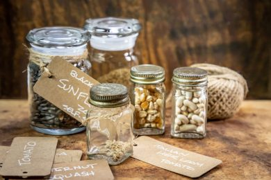 SEPTEMBER PLANTING IS MADE POSSIBLE BY SAVING YOUR OWN SEEDS.