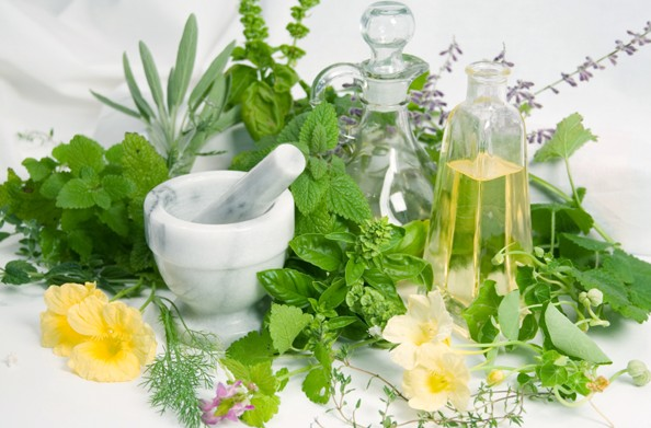 The Most Effective Folk Remedies for Treating Potency